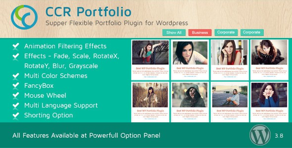 CCR-WordPress-Portfolio-Plugin-Multipurpose-Use